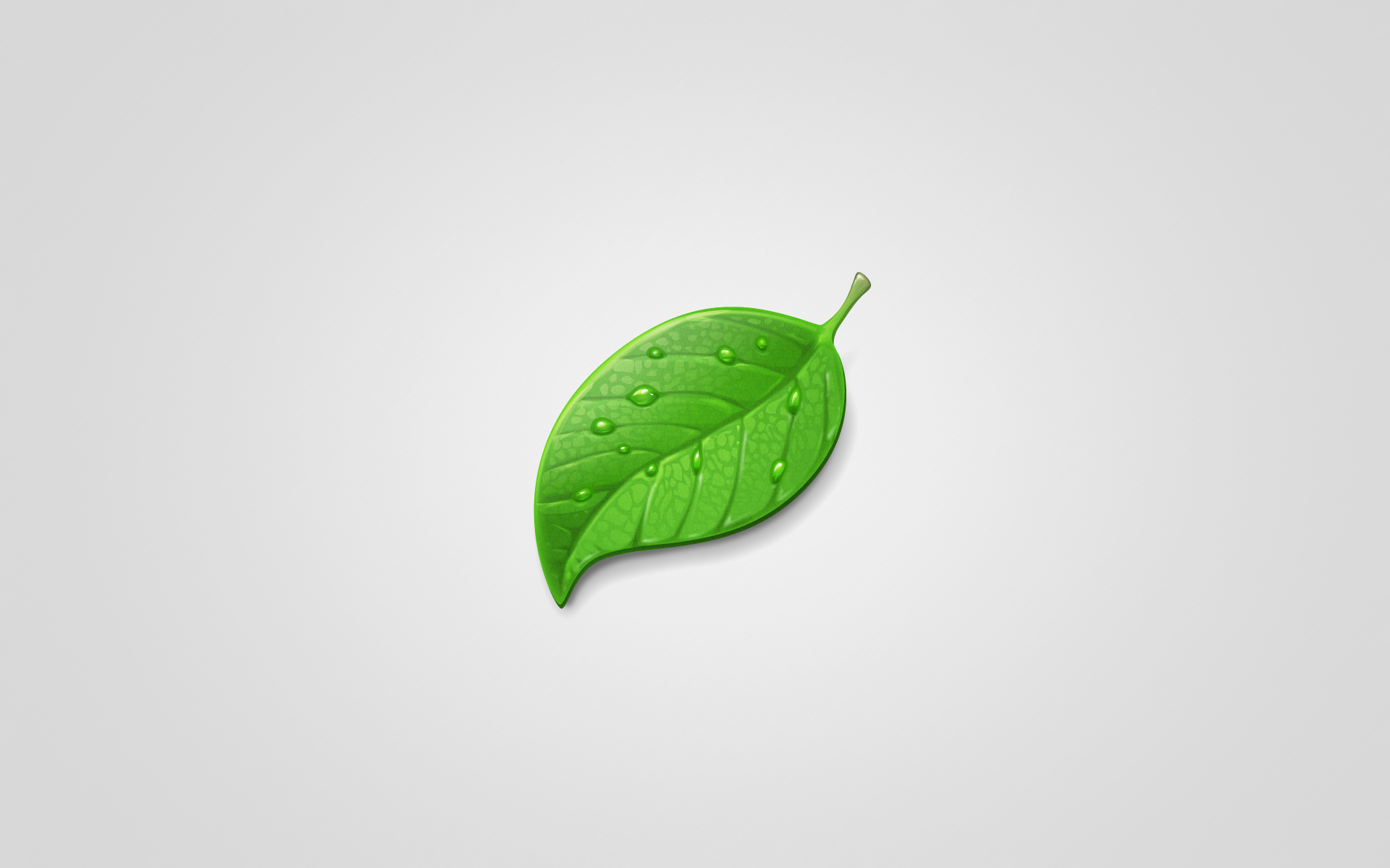 Green leaf for Architecture definition simple